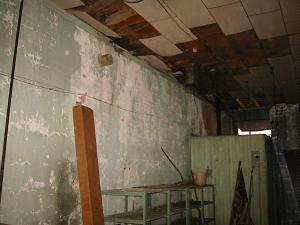 original building with mold, asbestos and rotted wood